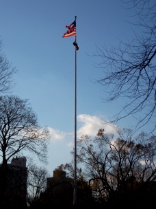 American Flag - Central Park